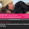 Onlinekurs: Bindung- & Kommunikation von Mensch & Hund mit Pia Gröning